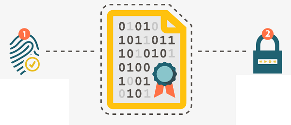 ssl-certificate Introduction to Different Types of SSL Certificates