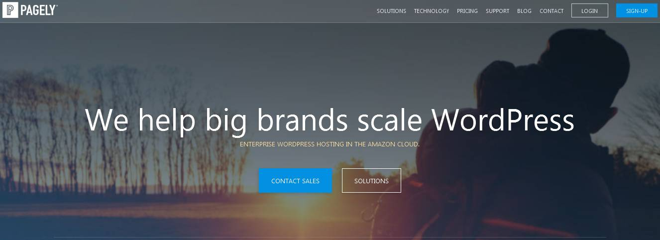 pagely-top-5-managed-wordpress-hosting-providers