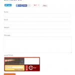 Create Contact Page with ContactBuddy Plugin in WordPress