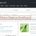 What is Plugin in WordPress and How does it work?